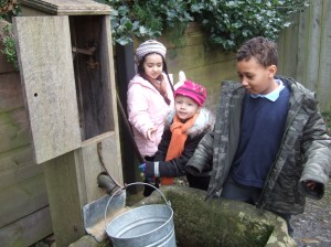 Year 2 at the water pump